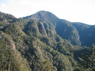 ヒヨドリ山