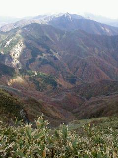 ソバコマタ林道と冠山