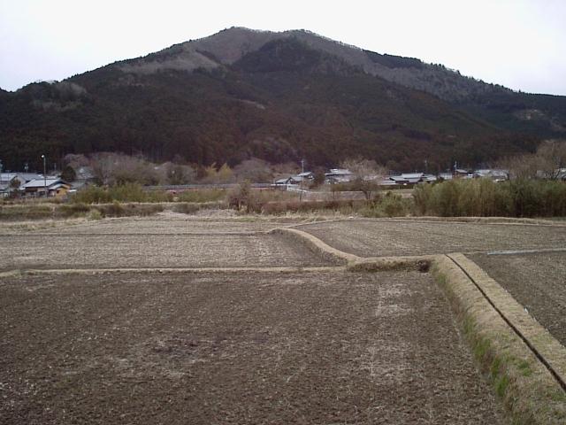 浅間山・幸の森・網掛山