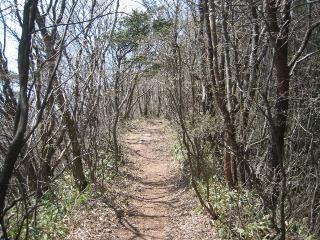 住塚山への道
