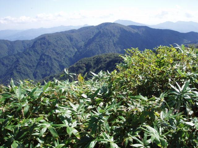 日本平山から人ガ谷山