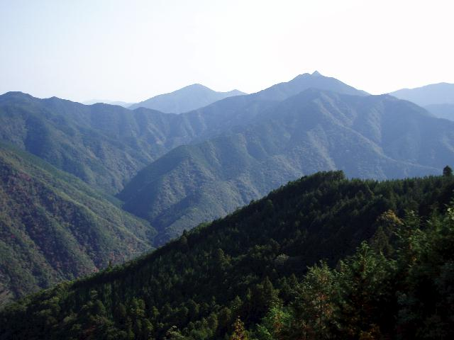 林道より矢筈岳・冷清山を望む