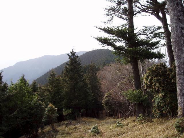大森山・太平多山を望む