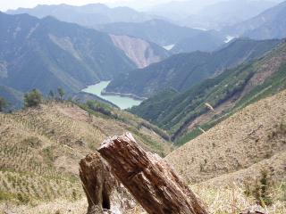 池原ダム湖