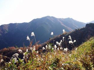観音岳から堀坂山