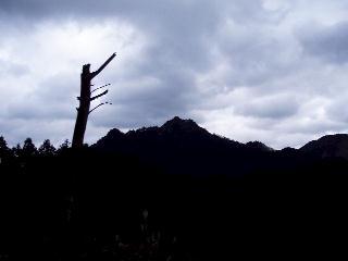 伐採地から御峰