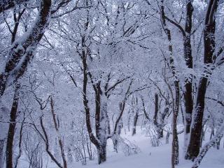 稜線雪景色