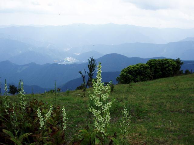 三峰山八丁平