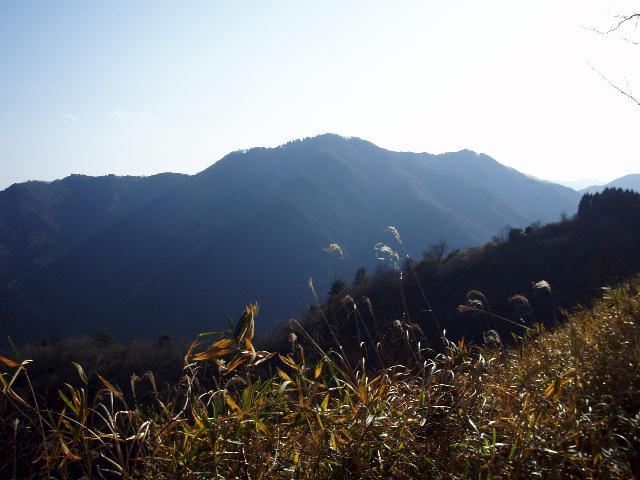 観音岳から堀坂山を望む
