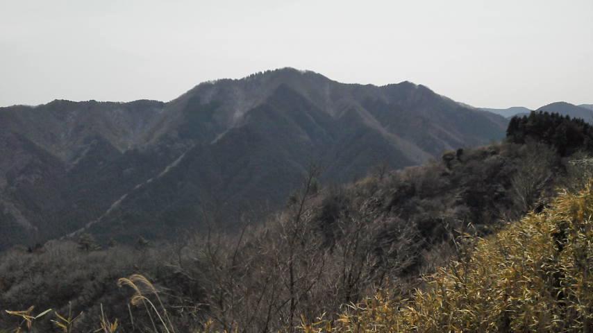 堀坂山を望む