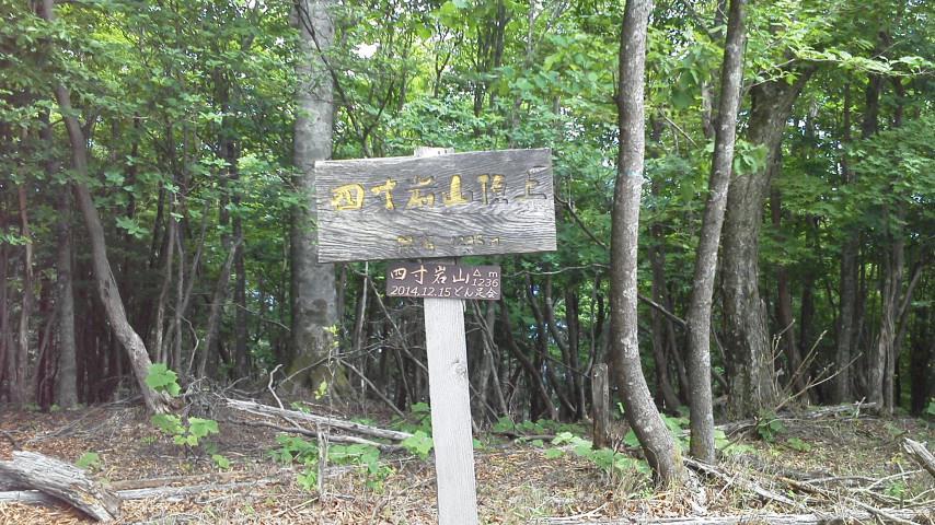 四寸岩山・青根ヶ峰・高城山